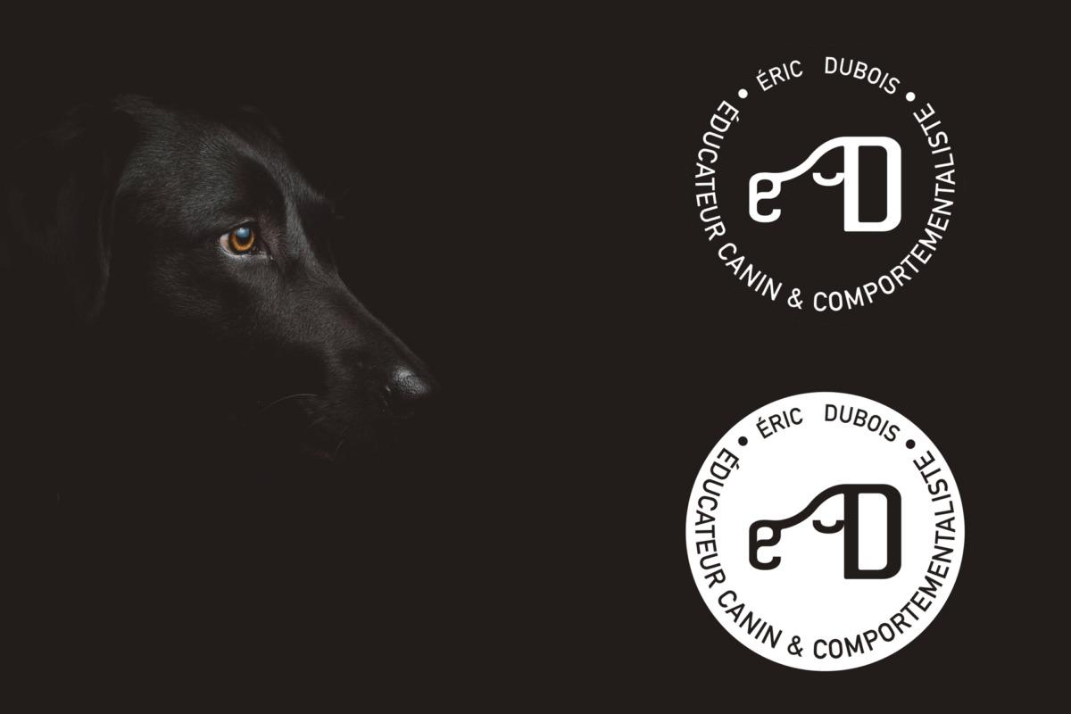 chien-couleur-noir